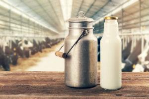 Mode aus Milch - Milchkanne und Miclhflasche & im Hintergrund ein Kuhstall